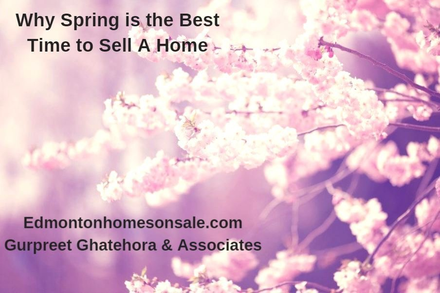Selling house in spring